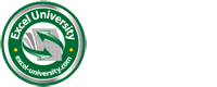 Excel University
